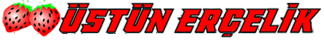 usunercelik-logo