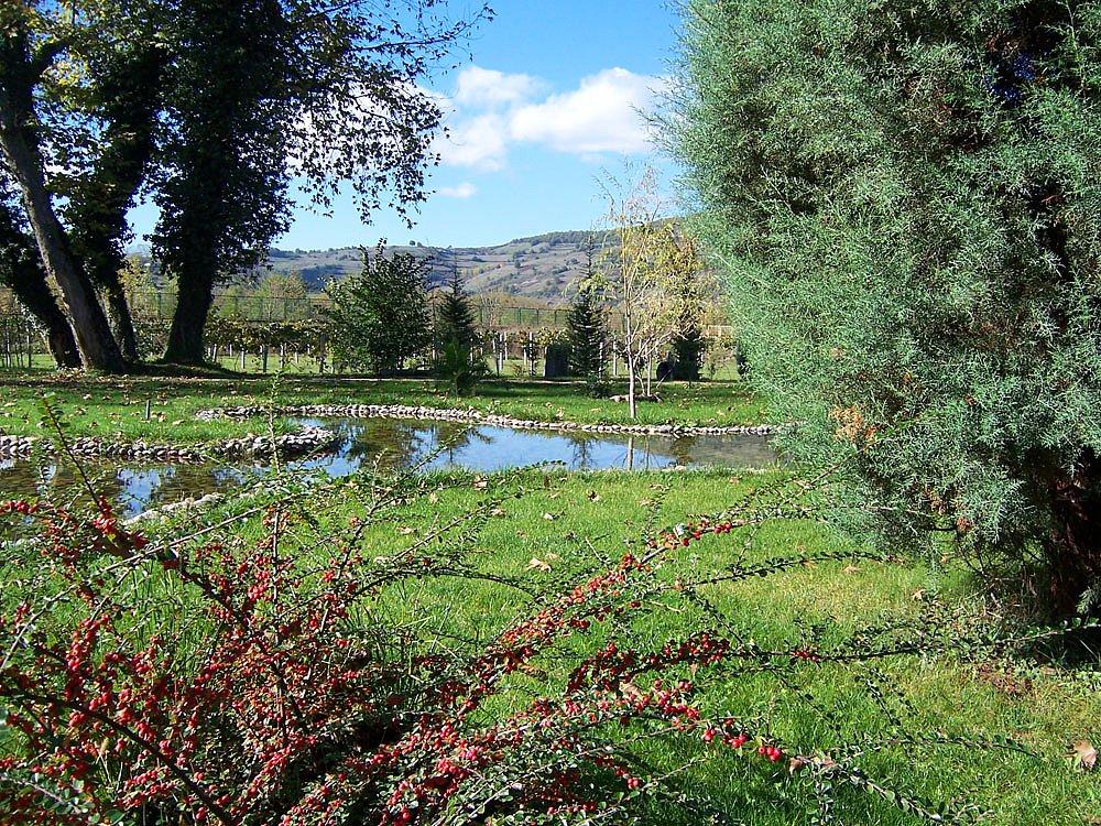 5- Arboretum